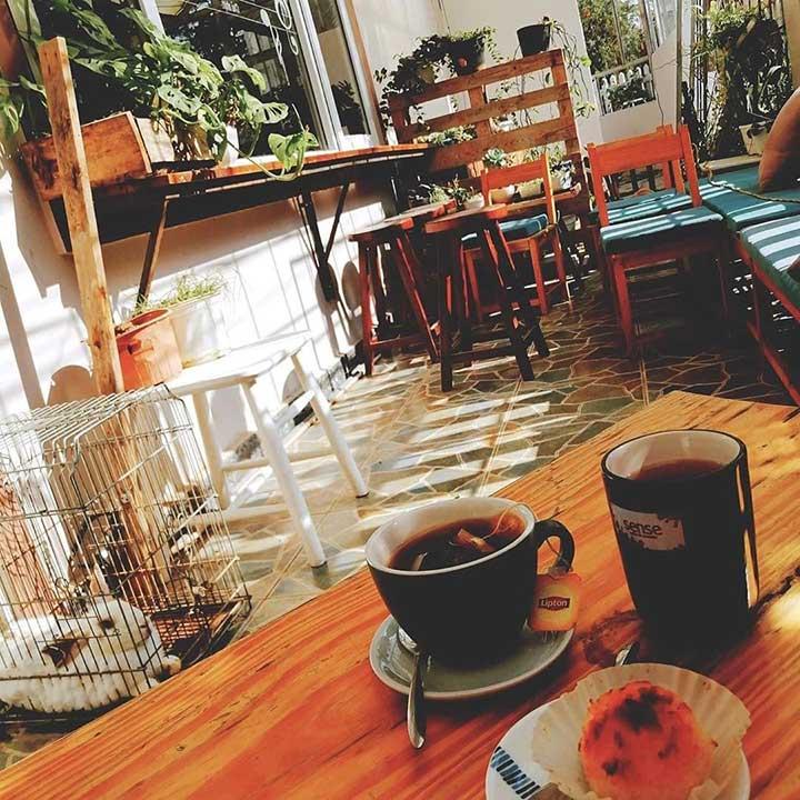 Sense Coffee Acoustic Đà Lạt