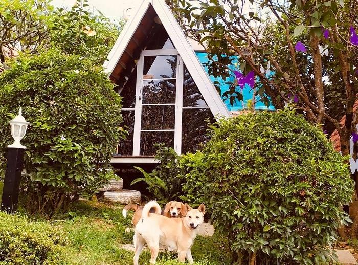 Vanda Garden Hill Đà Lạt