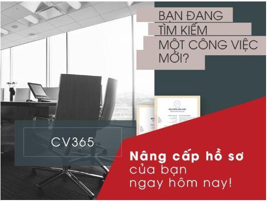 Timviec365.vn – website tìm việc làm số một Việt Nam! 2019 5