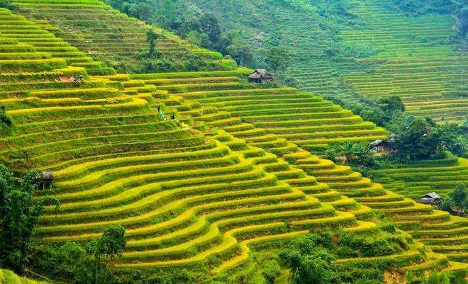 Bản đồ du lịch và hành chính tỉnh Hà Giang đầy đủ và chính xác 2019 15