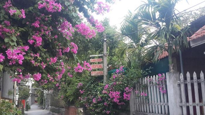 Tam Coc Tropical Homestay2