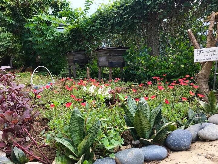 Vườn Pun