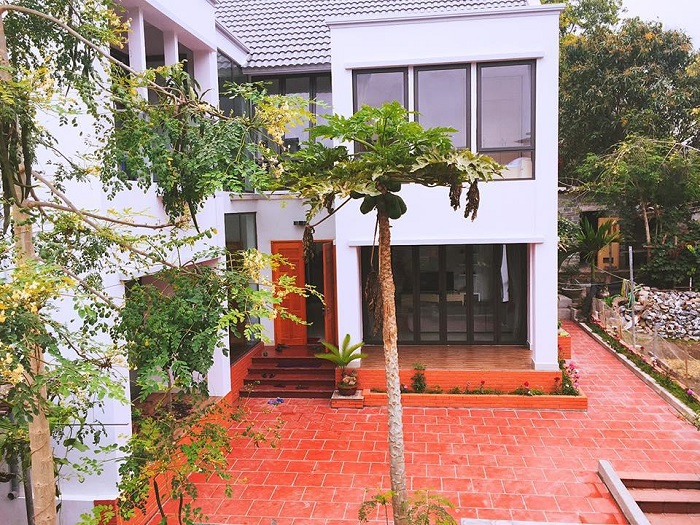 d'home homestay 3
