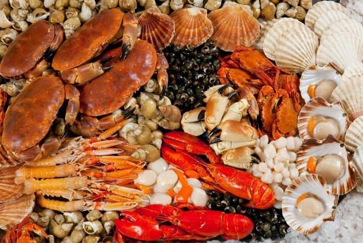 Hải sản Côn Đảo không có gì ngoài sự đa dạng, phong phú và tươi ngon