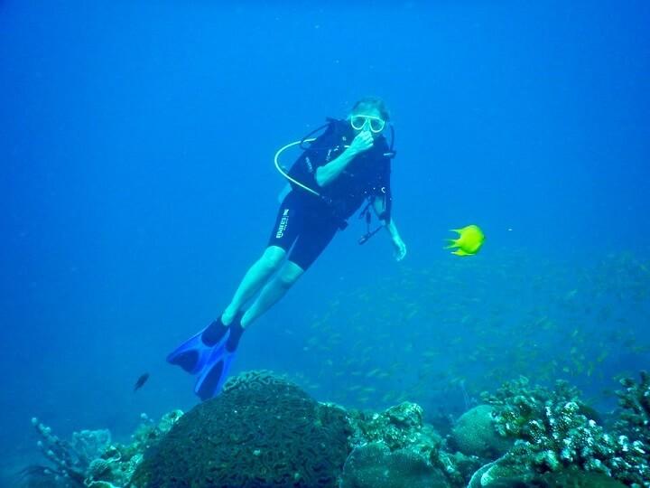 Lặn ngắm san hô, hoạt động đem lại sự kì thú và ảo diệu