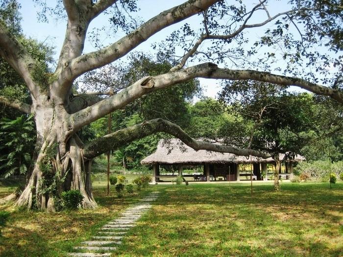 Khu di tích Tân Trào