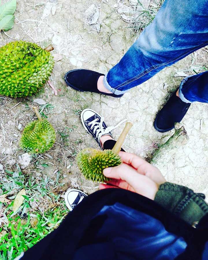 Khu du lịch sinh thái vườn Ba Ngói