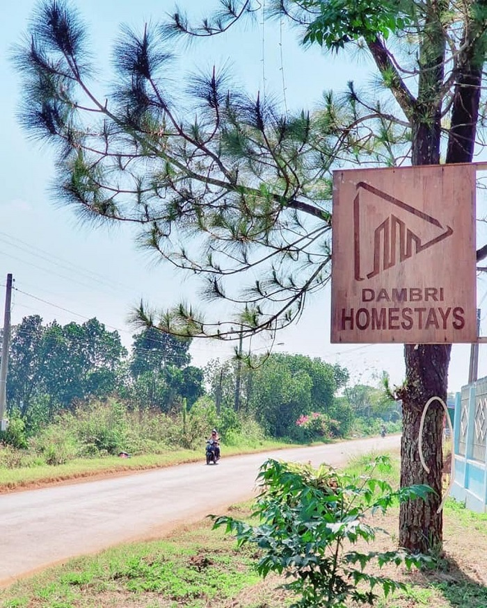 Homestay dambri 3