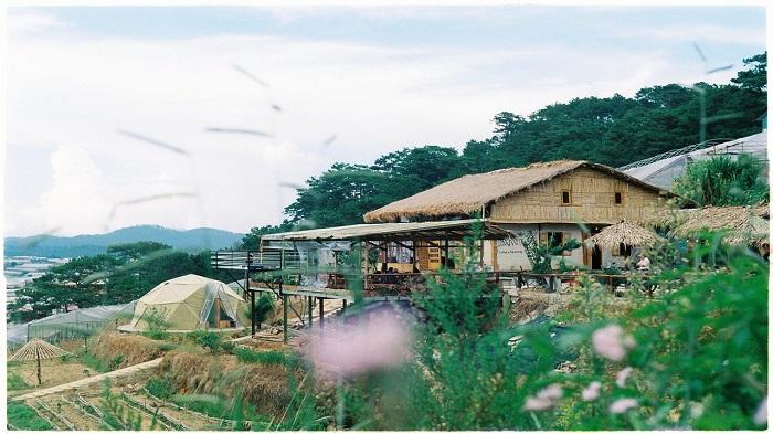 the organic llife homestay bao loc 3