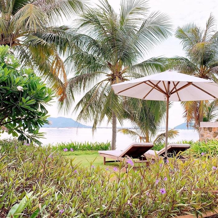 que toi village resort phu yen